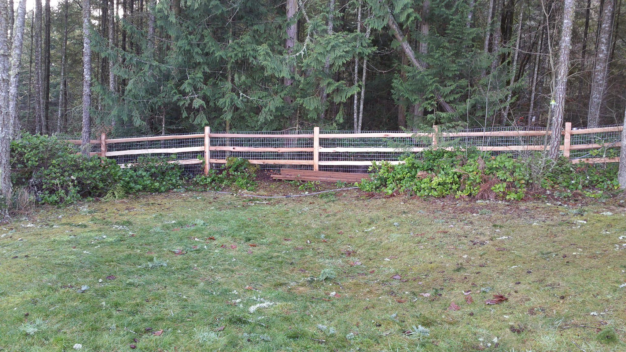 Landscaping Services Image 57